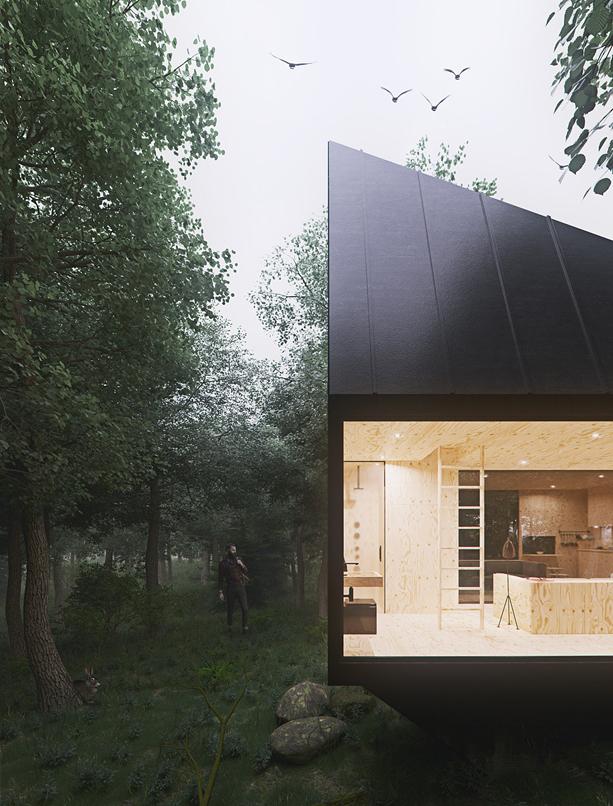 cabin_wood_4