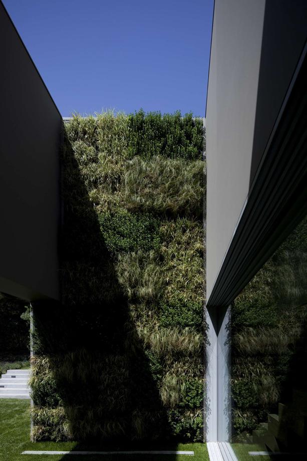 Quinta-Patino-House-3