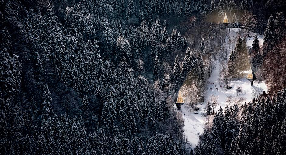 Single Pole Treehouse by Konrad Wojcik
