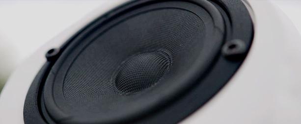 putin-head-speaker-5