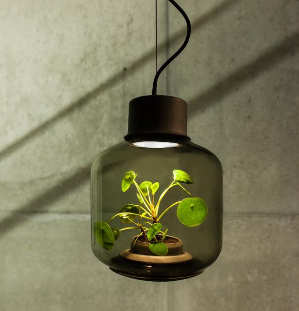 mygdal_lamp_4