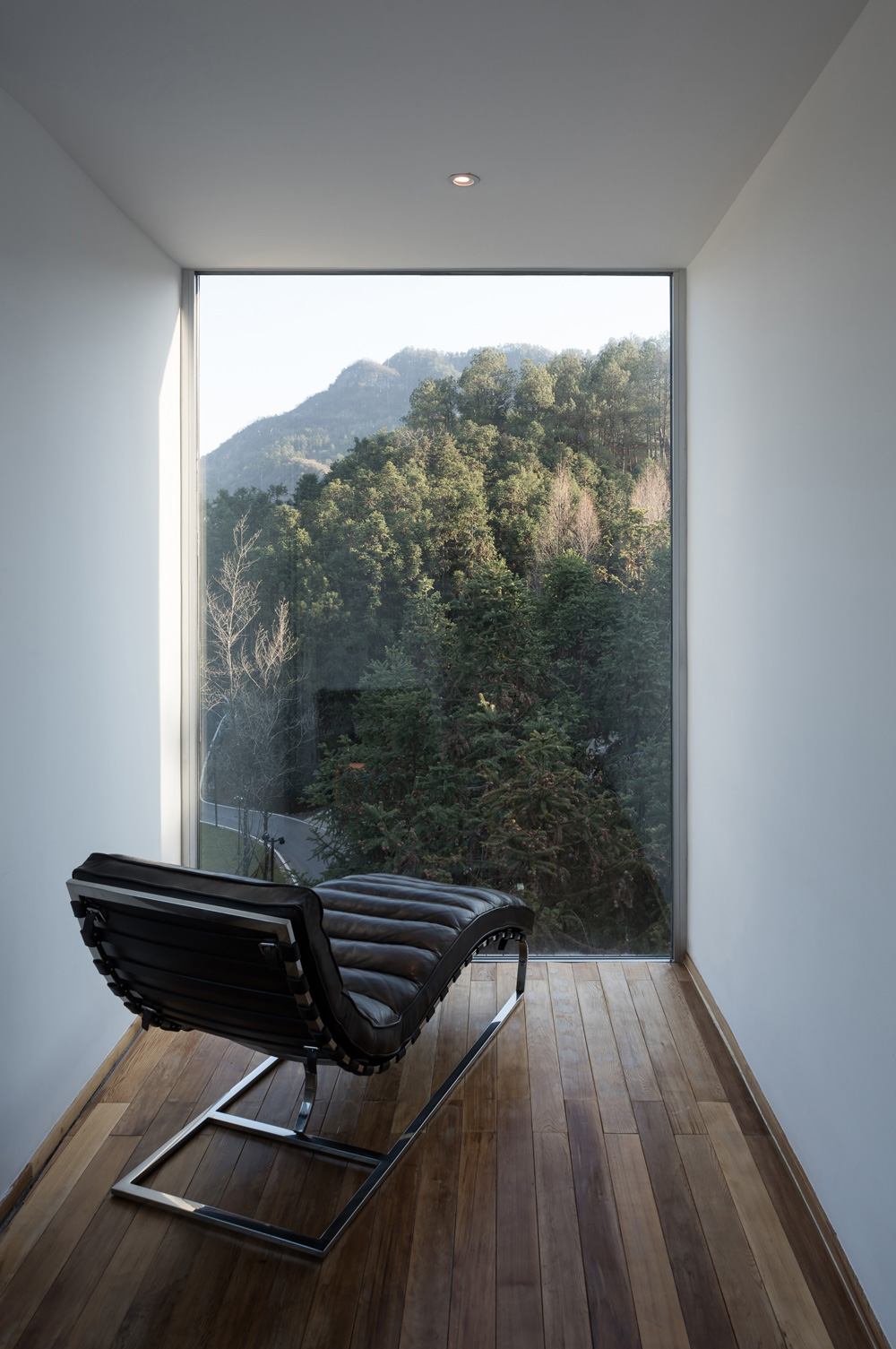 Opumo-Tree-House