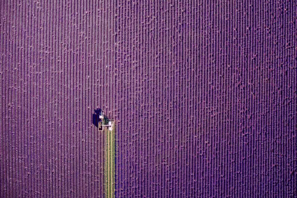 Dronestagram-winners-2017-5