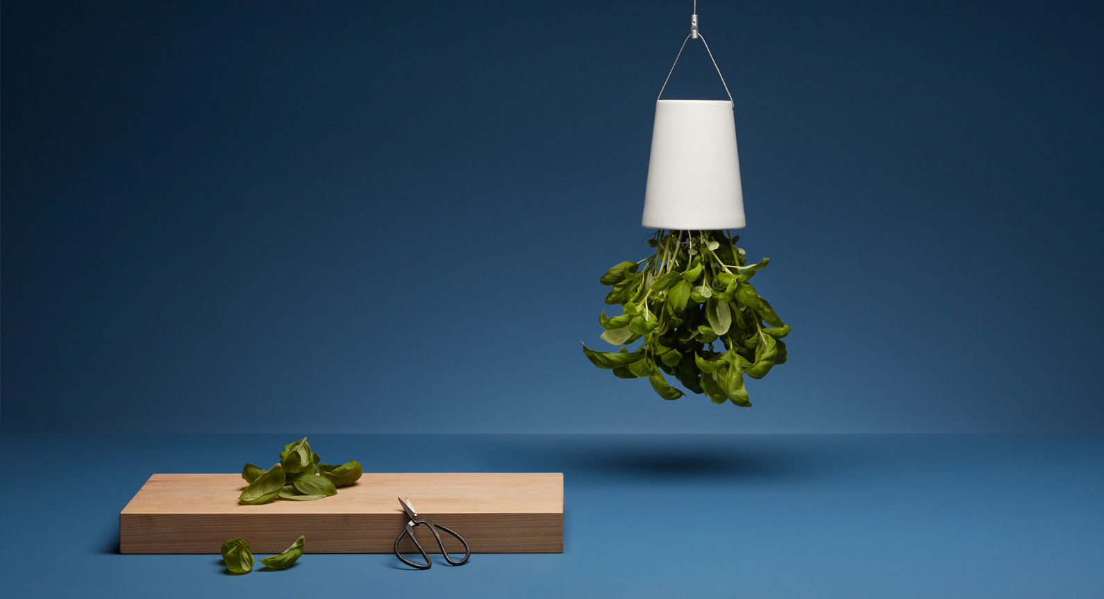Introducing The Sky Planter From Boskke