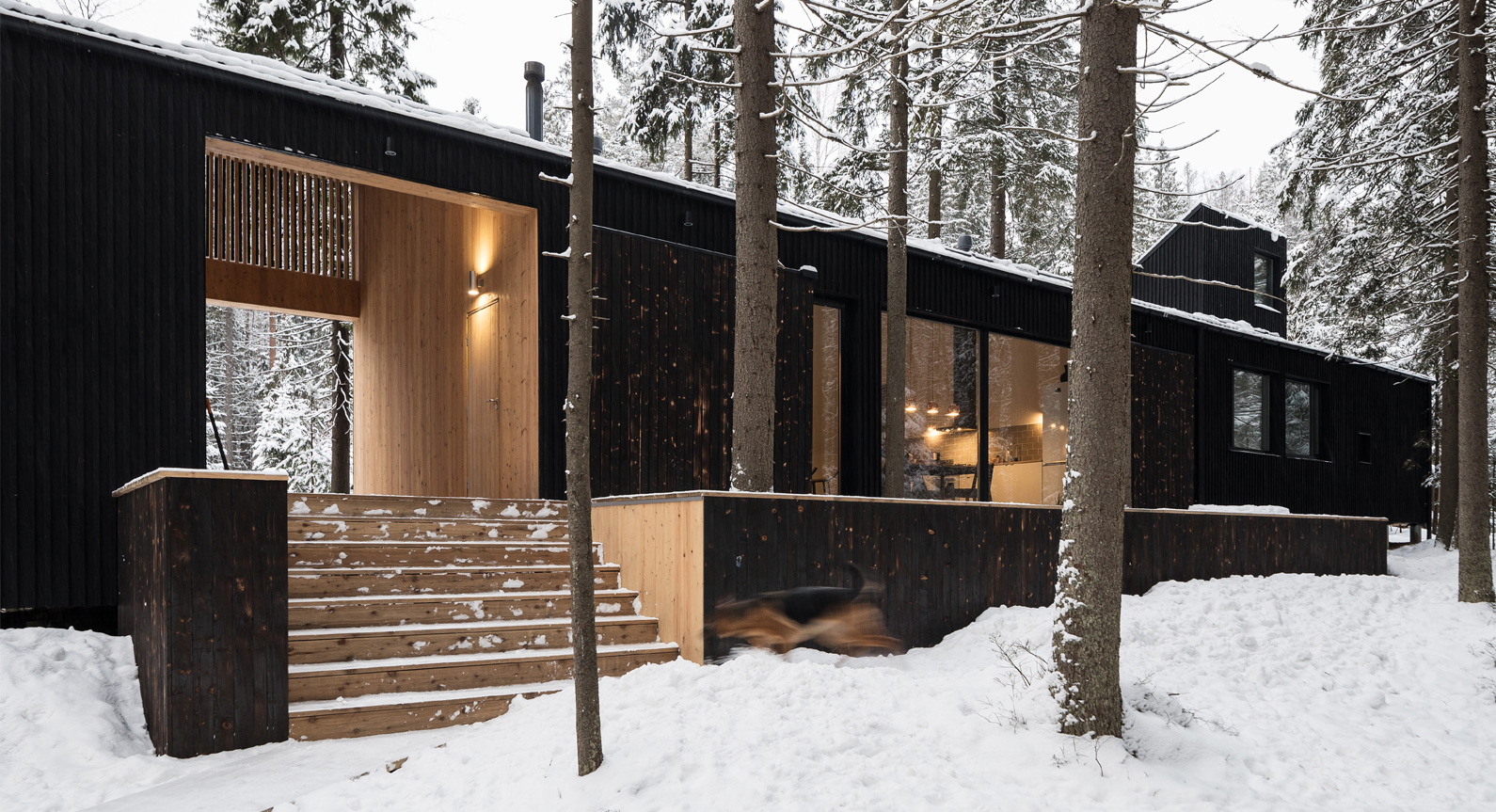 Take A Retreat Into The Woods With The House In Roschino