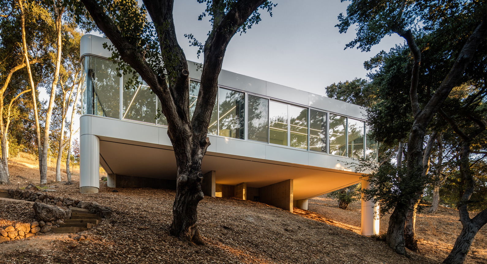 This Modern Family Home Floats High Above The Tree Tops