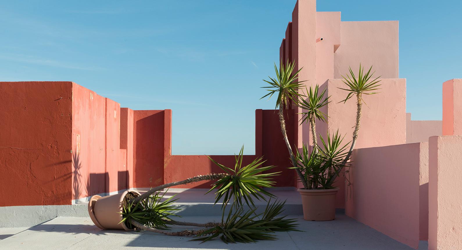 Andres Gallardo's Images Reveal The Fantasy That Is La Muralla Roja