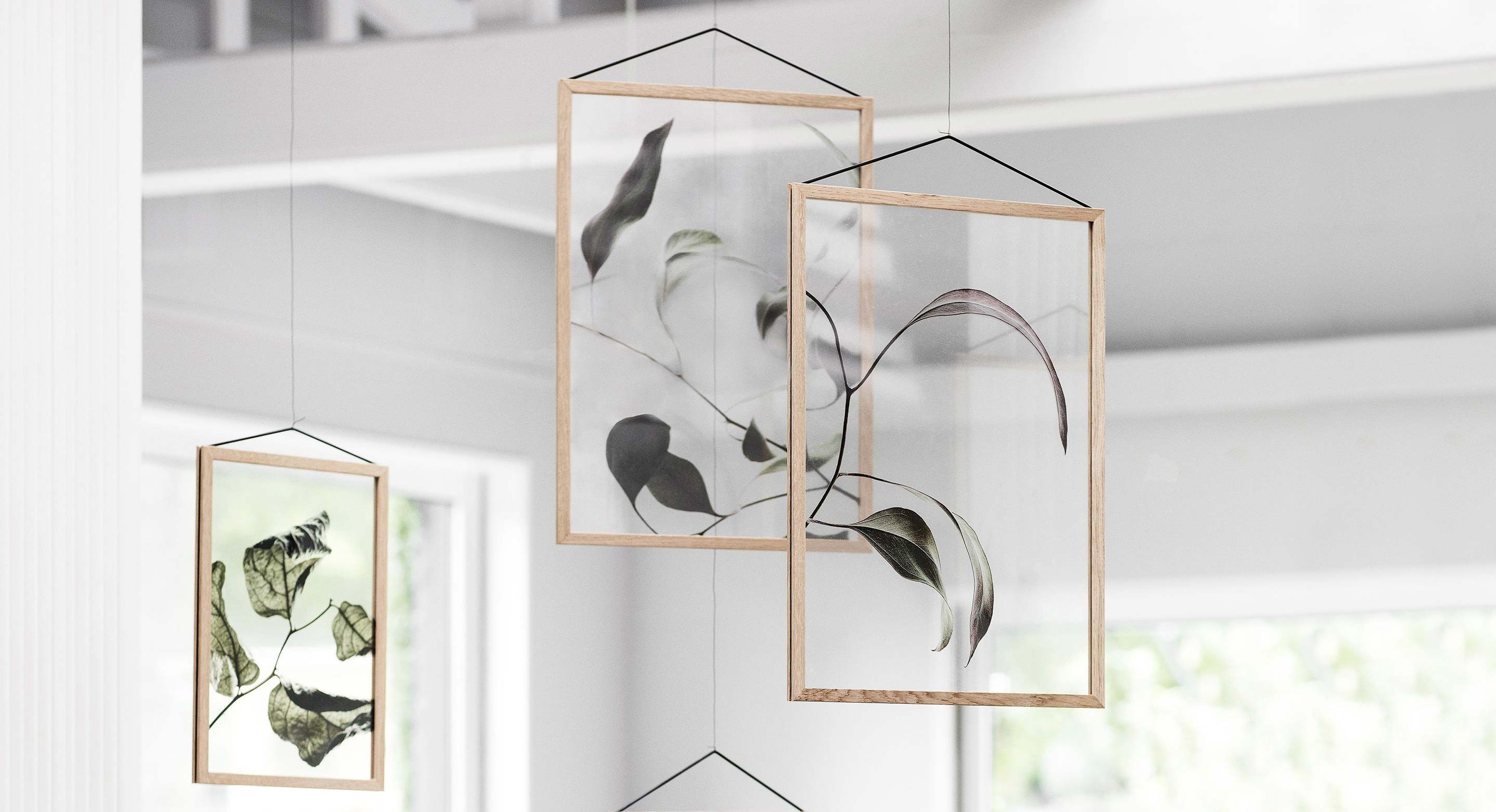 Three Danish Design Giants Join Forces To Release Transparent Botanical Prints